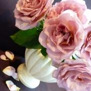「売り物にならなかった花」【応募者全員にプレゼント有り】身近にあるバラを探してみよう!の投稿画像