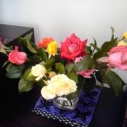 「母からのおすそわけ(Ο^―^Ο)」【応募者全員にプレゼント有り】身近にあるバラを探してみよう!の投稿画像