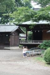 遠いとこから日本への画像(3枚目)