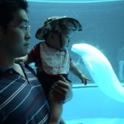 「生まれてきてよかったね」【赤ちゃん写真コンテスト開催】魚沼産コシヒカリ1年分♪豪華賞品多数ご用意!の投稿画像