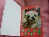「とってもかわいいフォトブック 我が家のクリスマスデコレブック・Kpi Pink~♪」の画像(4枚目)