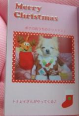 「とってもかわいいフォトブック 我が家のクリスマスデコレブック・Kpi Pink~♪」の画像(5枚目)