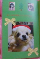 「とってもかわいいフォトブック 我が家のクリスマスデコレブック・Kpi Pink~♪」の画像(8枚目)