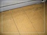毎日のお掃除を楽しく☆バイオ洗剤とれるNO.1の画像(9枚目)