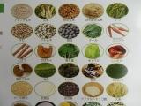 お試し!自然派置き換えダイエット『韓穀菜』@モニプラの画像(2枚目)