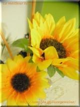 *...+Siganal Flower Diffuser+...* by tommyRの画像(3枚目)