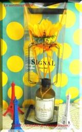 *...+Siganal Flower Diffuser+...* by tommyRの画像(1枚目)