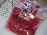 紅しょうがのリュステッィク☆ と、サガミ。の画像(3枚目)