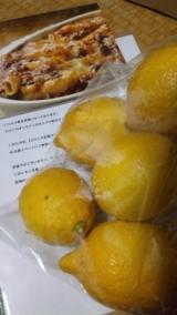 モニプラ:ピエトロのレモン♪の画像(1枚目)
