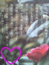 「☆ 椿の泡でもこもこサッパリ~まるごと椿石鹸 ☆」の画像(2枚目)