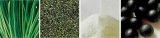 ユーグレナ入りロハス青汁「green×green」      青汁クッキーレシピご紹介♪の画像(4枚目)