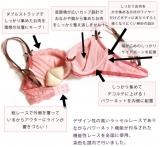 「日本人女性の体形に合わせて開発された育乳ブラ*」の画像(1枚目)