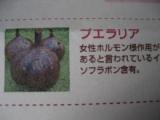 「バストケアサプリメント☆」の画像(4枚目)