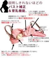 「新作育乳ブラ【マリーのデコルテの記事を書いてくださった方に!選べるプレゼント♪ ←参加中」の画像(1枚目)