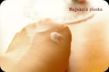 ■■【こっそりビューティ日記】~桜花媛ナイトクリーム▲の画像(3枚目)