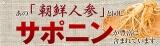 c-Kirei 食物繊維たっぷりでスッキリ! 話題の!「国産ゴボウ茶」を飲んでみたナウ♪の画像(2枚目)