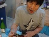 「ヒーハー、手巻き寿司」の画像(3枚目)