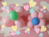 桜と白美人♡の画像(3枚目)