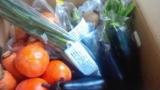 お師匠様のご両親様からお米と富有柿を頂きました♪の画像(4枚目)