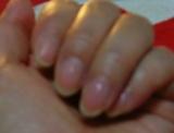 「爪」の画像(1枚目)