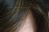 口コミ:100%天然植物成分白髪染め★マックヘナ★ナチュラルオレンジを試してみました~~♪の画像(2枚目)