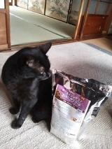 猫ちゃんのエイジングケアに特化した おもいやりフード