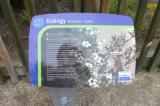 ニュージーランドのハチミツといえばの画像(2枚目)