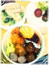 今日のお弁当&昨日の夕飯の画像(1枚目)