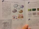SONOKO BBクリームの画像(2枚目)