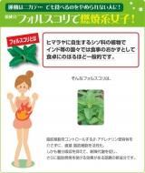 医食同源ドットコムさんのコレウスフォースコリ☆彡の画像(3枚目)