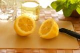 レモンミントソーダ