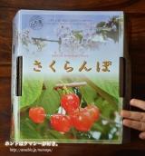 「紅艶♡サクランボ」の画像(3枚目)