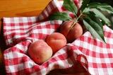 今年の庭の桃♪の画像(1枚目)