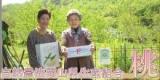 岡山県の白桃の画像(2枚目)