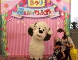 ワンワンコンサート♡の画像(2枚目)