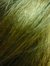 「100%天然植物成分の白髪染めマックヘナとAHシャンプー&トリートメント 」の画像(7枚目)