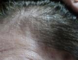 「マックへナで白髪染め~2回目」の画像(3枚目)
