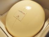 『家庭用エンダモロジーwellbox』1ヶ月体験!その?の画像(3枚目)