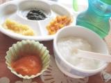 無添加の野菜パウダーで離乳食の画像(9枚目)