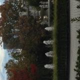 昼下がりの公園♪