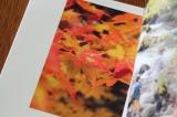 木曽福島の旅をphoto bookに… by primaryの画像(5枚目)