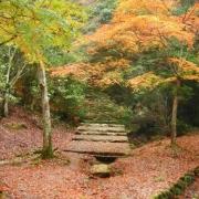 「安芸の風景」あなたが見つけた「秋の風景」写真コンテスト!の投稿画像