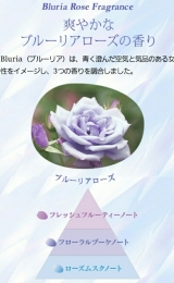 ベーネ✧ありのままの素髪ケア✧アナ雪versionの画像(7枚目)