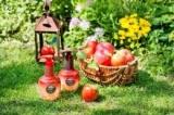 りんごのチカラで洗うシャンプー アップリノの画像(2枚目)