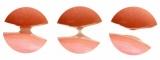 TUNE MAKRS(チューンメーカーズ) 原液保湿クリーム液の画像(8枚目)