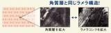 Macchia Label(マキアレイベル) ナイトマスク-ラメラ-の画像(2枚目)