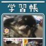 【マンナンライフ】大粒アロエinクラッシュタイプ★新発売モニターイベント★の画像(4枚目)