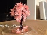 【完成!】*6時間で咲くハート「マジックラブツリー ミニ」を咲かせてみました♪の画像(7枚目)