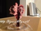 【完成!】*6時間で咲くハート「マジックラブツリー ミニ」を咲かせてみました♪の画像(6枚目)