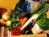 元気野菜セット10品目。(モニプラ)の画像(3枚目)